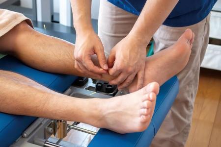 鍼灸治療による「下行性疼痛抑制系」